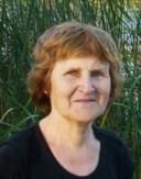 Dr. VALENTYNA MESHKOVA